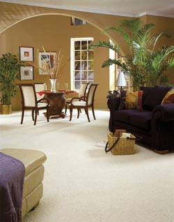 carpet flooring in family room